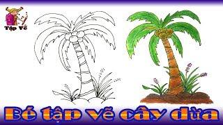 Bé tập vẽ cây dừa theo mẫu | drawing coconut trees