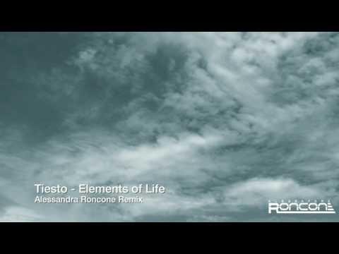Tiesto elements of Life (Alessandra Roncone remix)