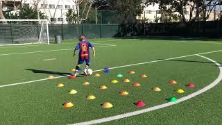 BRIGHTON LEE SAGAL - Soccer training skills