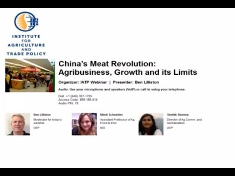China's Meat Revolution: Agribusiness, Growth and Its Limits
