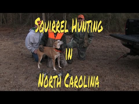 Squirrel Hunting In North Carolina With Pro Staff Members Miller Outdoors