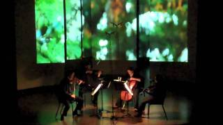 Glazunov - Five Novelettes: Interludium in modo antico  (Kontras Quartet)