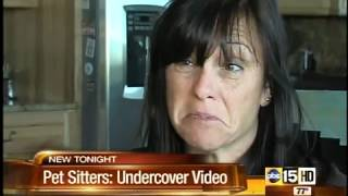 Trustworthy? Hidden cameras show pet sitter problems
