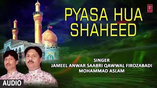 ► प्यासा हुआ शहीद (Audio) Muharram || JAMEEL ANWAR SABRI QAWWAL || T-Series Islamic Music