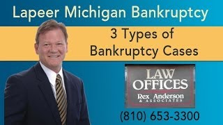 Lapeer Michigan Bankruptcy Attorney - 3 Types Of Bankruptcy Cases - Rex Anderson PC