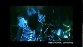 『Pleasure Drop』 Zoobombs