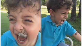 frog attacks little boy