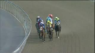 Vidéo de la course PMU PRIX SEA COTTAGE