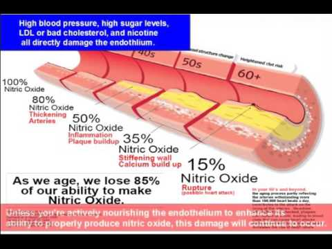 L-Arginine Benefits Human Performance