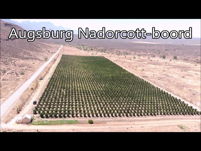 Augsburg Landbougimnasium - Nadorcott Nette
