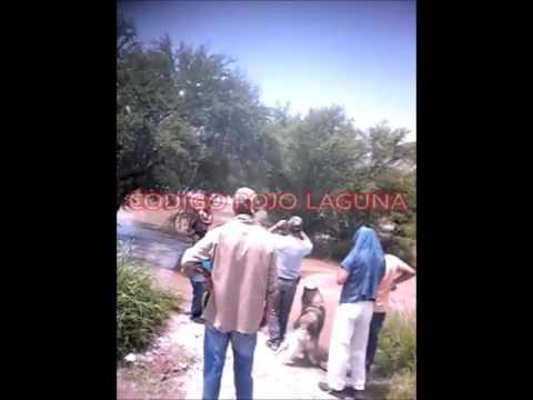 Rescatan Perro del Rio Nazas.