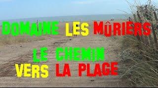 France - Vendres Plage - Domaine Les Mûriers - Le chemin pédestre vers la plage - juillet 2016