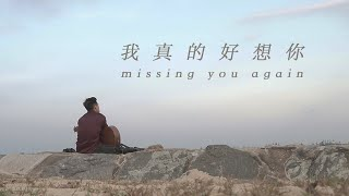 Download lagu 我真的好想你 Missing You Again Butterworks MP3