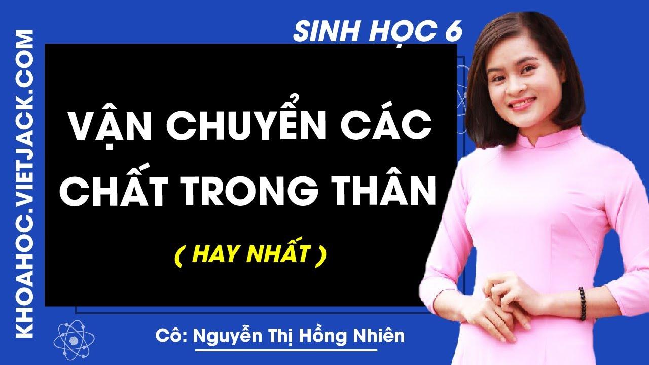 Sinh học 6 – Bài 17 – Vận chuyển các chất trong thân – Cô Nguyễn Thị Hồng Nhiên (HAY NHẤT)