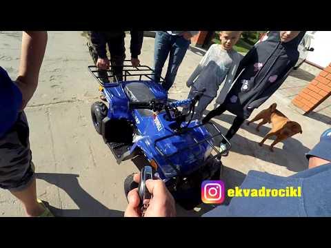 Детский Квадроцикл MOWGLI Sharp бензиновый