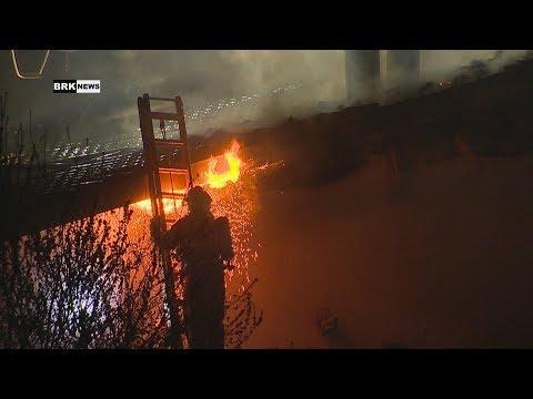Neftenbach ZH: Dachstockbrand