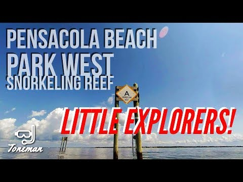 Child's Play! Exploring the Park West Snorkeling Reef at Pensacola Beach!!