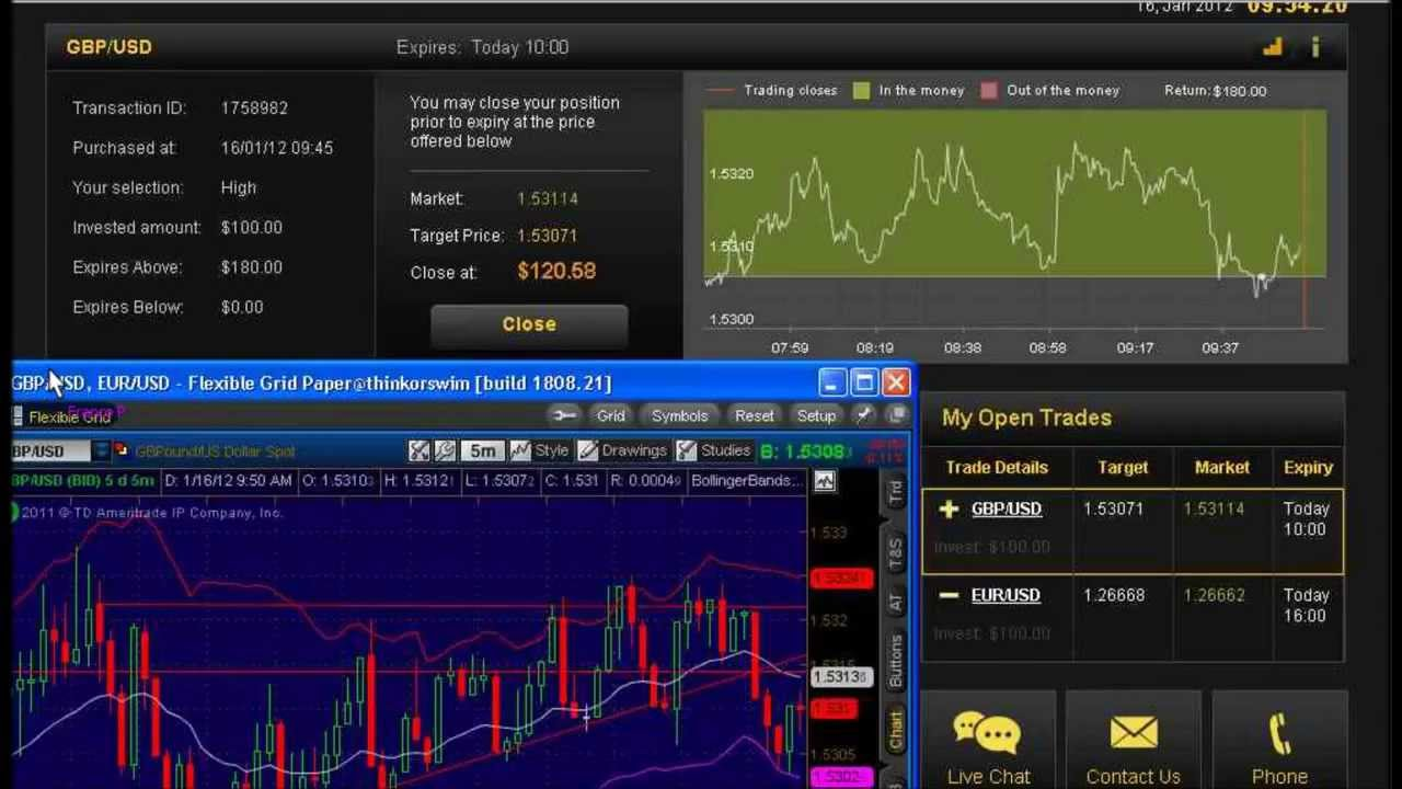 Binary options live trader