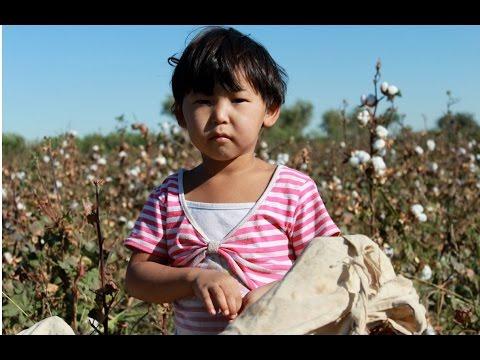 State Sponsored Forced Labor in Uzbekistan