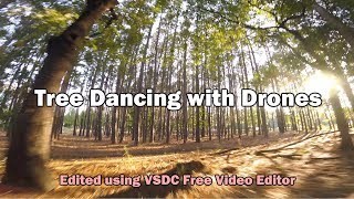 Tree Dancing with Drones - Edited with FREE software - VSDC
