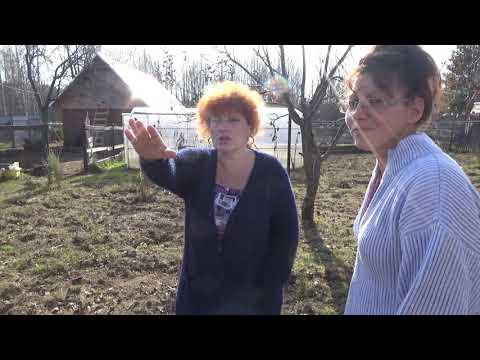 Обалденные москвичи, обалдевшие от жизни в деревне. Часть1