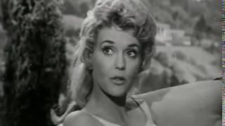 The Beverly Hillbillies - Season 1, Episode 10 (1962) - Pygmalion and Elly - Paul Henning
