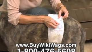 Wiki Wags Disposable Male Dog Wraps - As Seen On Tv