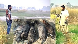 Hunting in village | Duck hunting in Pakistan | Hunting in Pakistan 2019 | Hunting Style