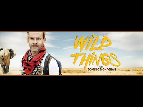 Wild Things with Dominic Monaghan 307 Philippines x264 poke