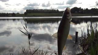 ПОПАЛАСЬ ГИГАНТСКАЯ ПЛОТВА Осенняя рыбалка как летом