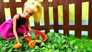 Şehirli Barbie ve Köylü Barbie. Kız oyunları