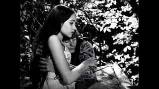 Bài hát tiếng ý nổi tiếng nhất, hay nhất, O mio babbino caro (dịch tiếng Việt) Vietnamese lyrics