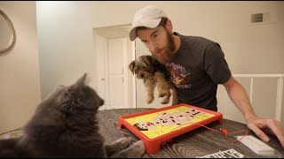 TRYING TO PLAY GAMES WITH MY CAT & DOG! (LEFTOVERS!)
