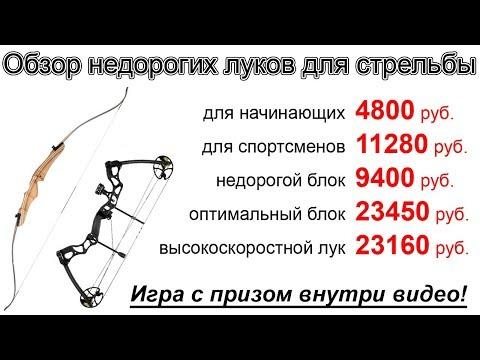 Обзор луков для стрельбы бюджетного класса от 4800 рублей