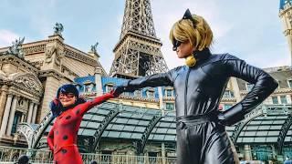 Ladybug & Black Cat
