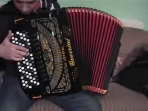 Guerrini professional 4 accordion for ni kontakt vst torrent