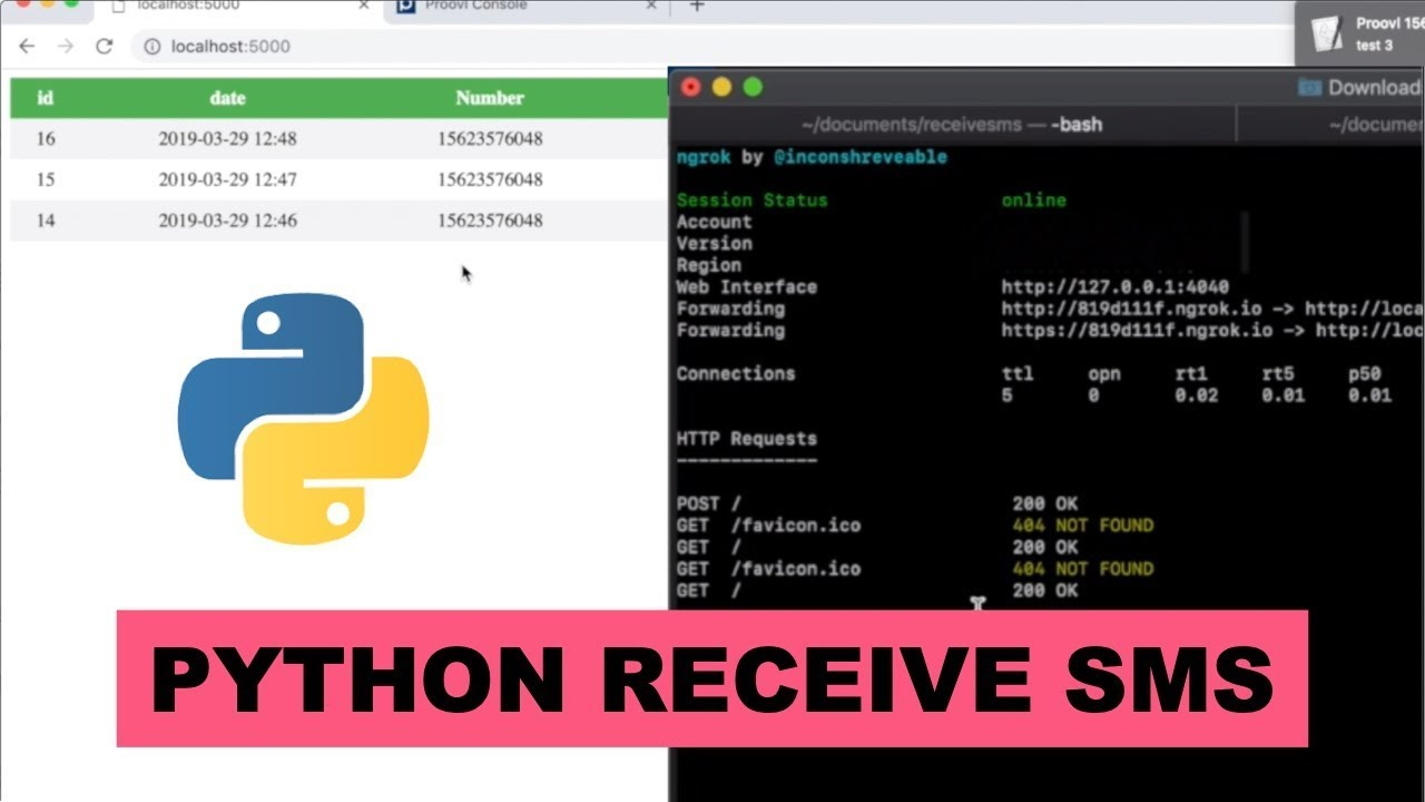 Python receive SMS project tutorial with SMS API connection
