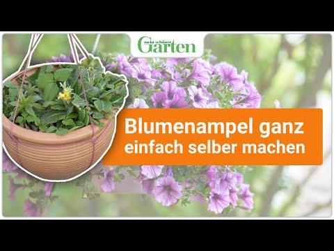 DIY: Blumenampel in 5 Schritten selbst gemacht