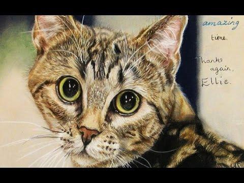 Speed Drawing - Tabby Cat