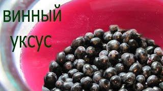 Винный уксус Рецепт приготовления уксуса из винограда  в домашних условиях Вкусный винный уксус