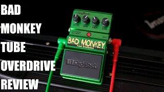 BAD MONKEY TUBE OVERDRIVE PEDAL REVIEW