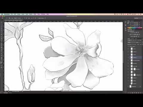Intuos Draw Speed Painting by Illustrator and Graphic Designer Ewelina Dymek