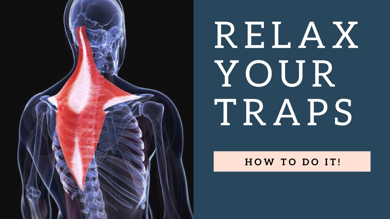 Relax A Painful Tight Trapezius Muscle In Neck Fast Exercises