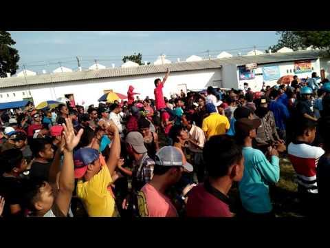 Pallapa live in jepara sabtu 1 juli 2017.  Mayong(gemiring lor)