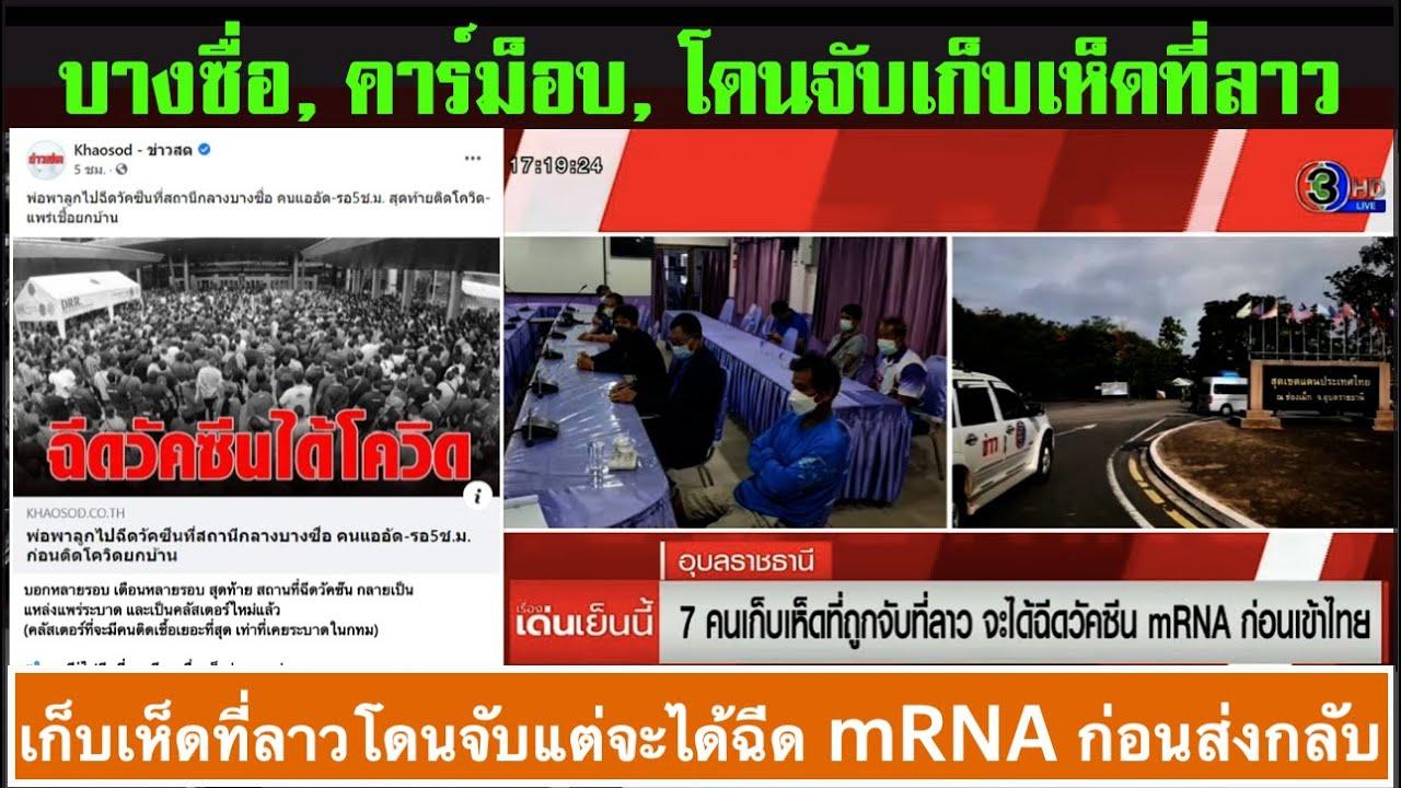ข่าวภาคดึก 03-08   02.45น.  : 7 คนไทยเก็บเห็ด หลงเข้าเขตลาว โดนจับฉีดไฟเซอร์