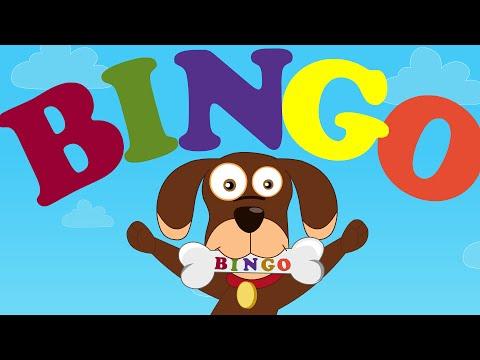 Bingo | Bingo was his name o | Nursery Rhymes And Kids Songs | Kids Tv Nursery Rhymes