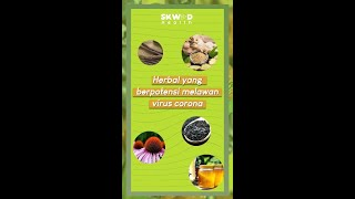 Herbal Yang Berpotensi Melawan Covid-19! #Shorts