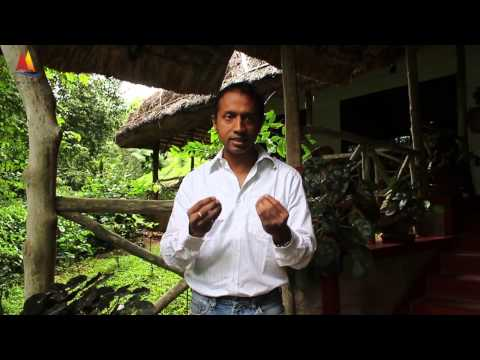 Magic of Kerala Eco Tourism