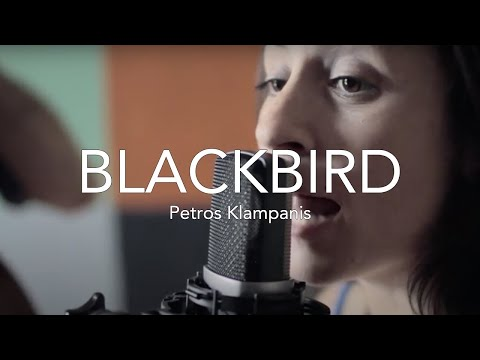 The BEATLES' Blackbird // by Petros Klampanis, Sofia Ribeiro & Marcelo Woloski