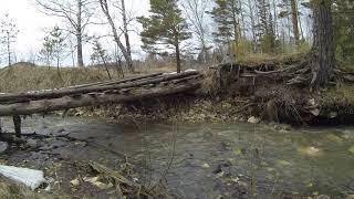 лес в апреле.Старый мост.Русло ручья